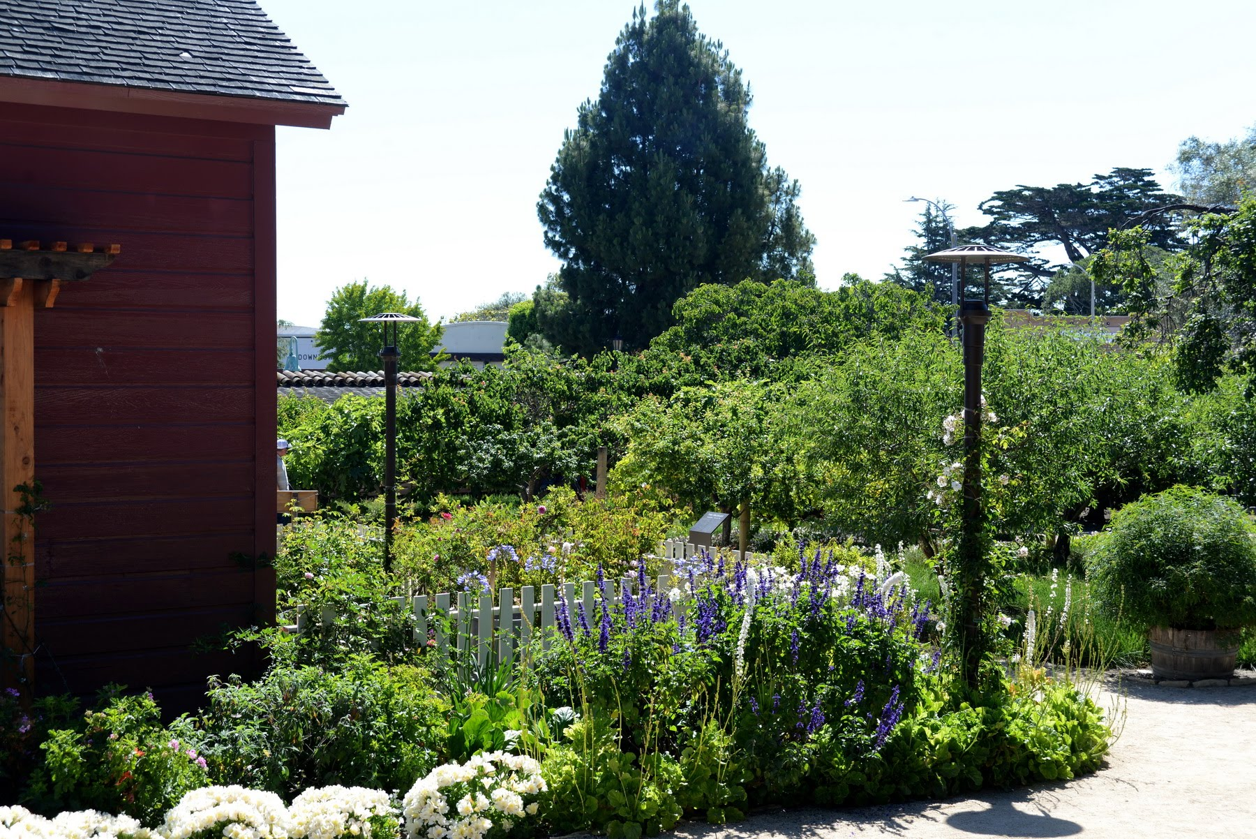 View of Red House Garden and Orchard in distance 2019 © Don Eastman